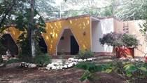 Homes for Sale in Tekax de Alvaro Obregon, Yucatan $6,000,000