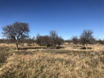 Farms and Acreages Sold in Collingsworth County, Dodson, Texas $590,000