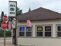 Commercial Real Estate for Sale in Wisconsin, Lyndon Station, Wisconsin $189,900