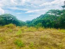 Lots and Land for Sale in Puntarenas, Quebrada Ganado, Puntarenas $45,000