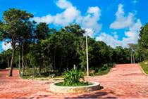 Homes for Sale in Chan Chemuyil, Chemuyil, Quintana Roo $112