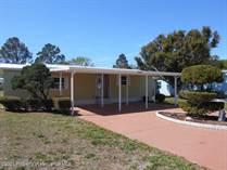 Homes for Sale in Brookridge, Brooksville, Florida $152,999