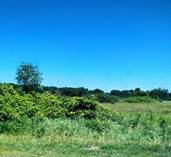 Lots and Land for Sale in Michigan, Webberville, Michigan $185,000