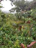 Lots and Land for Sale in Sector Santa Maria, Vieques, Puerto Rico $125,000