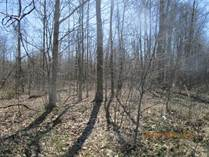 Lots and Land for Sale in Ohio, New Lyme, Ohio $18,900