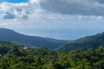 Lots and Land for Sale in Uvita, Puntarenas $580,000