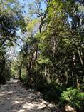 Lots and Land for Sale in Tulum, Quintana Roo $220,000