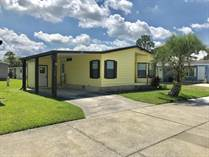 Homes for Sale in The Meadows at Country Wood, Plant City, Florida $18,500