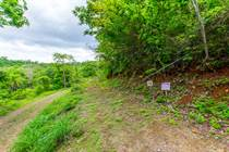 Lots and Land for Sale in Matapalo Beach , Guanacaste $38,000