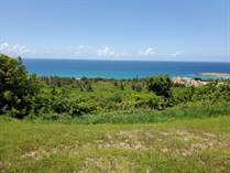 Lots and Land for Sale in Jobos Cliff, Isabela, Puerto Rico $235,000