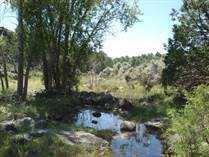 Farms and Acreages for Sale in Taos, New Mexico $125,000