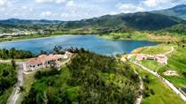 Homes for Sale in Naguabo, Puerto Rico $5,400,000