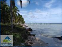 Lots and Land Sold in San Crisanto, Yucatan $6,000,000