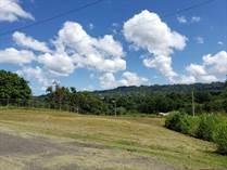 Lots and Land for Sale in BO. VOLADORA MOCA, Moca, Puerto Rico $50,000
