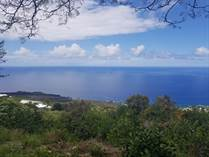 Lots and Land for Sale in South Kona, Captain Cook, Hawaii $300,000