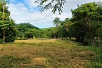 Homes for Sale in Playa Tamarindo, Tamarindo, Guanacaste $102,000