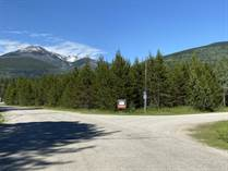 Commercial Real Estate for Sale in Valemount, British Columbia $329,000