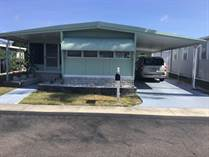 Homes for Sale in Honeymoon MHP, Dunedin, Florida $24,900