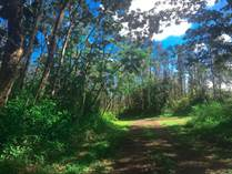 Lots and Land for Sale in Pahoa, Hawaii $9,000