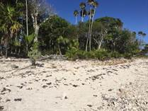 Lots and Land for Sale in Tulum, Quintana Roo $3,240,000