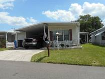 Homes Sold in Featherock, Valrico, Florida $25,000