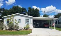 Homes for Sale in Ariana Village, Lakeland, Florida $69,900