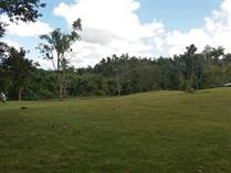 Lots and Land for Sale in Bo Hoyamala, SAN SEBASTIAN, Puerto Rico $54,000