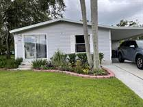Homes for Sale in Ariana Village, Lakeland, Florida $49,990