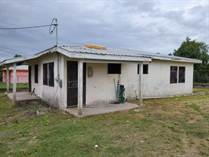 Homes for Sale in Burrel Boom , Belize $0