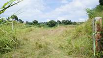 Lots and Land for Sale in Bo. Calvache, Rincon, Puerto Rico $400,000
