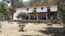 Farms and Acreages for Sale in San Sebastián del Oeste, San Sebastian, Jalisco $6,500,000