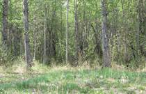 Lots and Land Sold in Lessard Landing, Lac Ste Anne County , Alberta $125,000