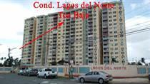 Condos for Rent/Lease in Lagos del Norte, Toa Baja, Puerto Rico $600 monthly
