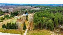 Commercial Real Estate for Sale in Loretto , TOTTENHAM, Ontario $1,449,000