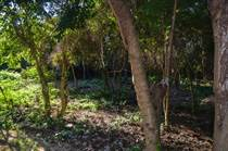 Lots and Land for Sale in Los Arboles, Tulum, Quintana Roo $70,000
