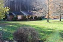 Homes for Sale in Delbarton, West Virginia $175,000