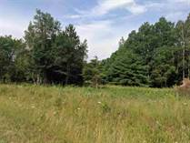Lots and Land for Sale in Beaverton, Michigan $27,900