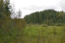 Lots and Land for Sale in Ethel Lake, Alberta $299,900