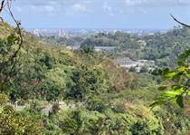 Lots and Land for Sale in Bo. Hato Nuevo, Guaynabo, Puerto Rico $1,320,000