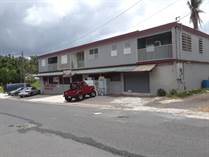 Commercial Real Estate for Sale in Bo. Quebrada Cruz, Toa Alta, Puerto Rico $295,000
