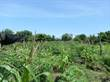 Lots and Land for Sale in Santa Marta, Magdalena $50,000,000