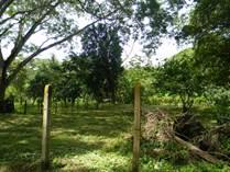 Lots and Land for Sale in Tarcoles, Garabito, Puntarenas $19,999
