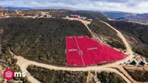 Homes for Sale in Valle de Guadalupe, Ensenada, Baja California $73,000