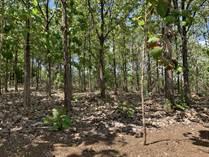 Homes for Sale in Playa Grande, Guanacaste $98,000