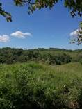 Farms and Acreages for Sale in Naranjito, Quepos, Puntarenas $9,600,000