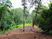 Lots and Land for Sale in Dominical, Puntarenas $147,000