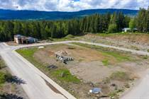 Lots and Land for Sale in Clearwater, British Columbia $64,900