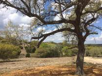 Lots and Land Sold in Vintage Oaks, New Braunfels, Texas $99,900
