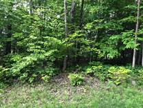 Lots and Land for Sale in Kettle's Beach, Tiny, Ontario $239,000