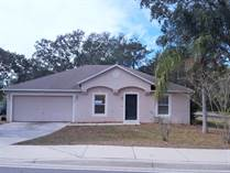 Homes for Sale in Deltona Lakes, Deltona, Florida $149,000